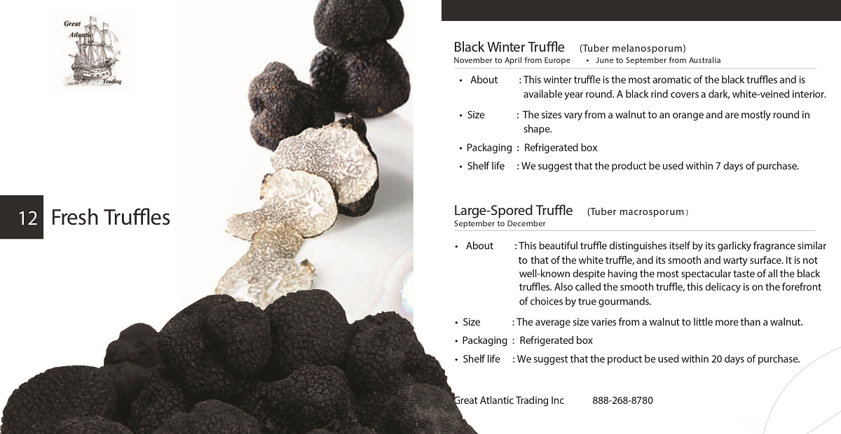 caviar-star-catalog-13.png